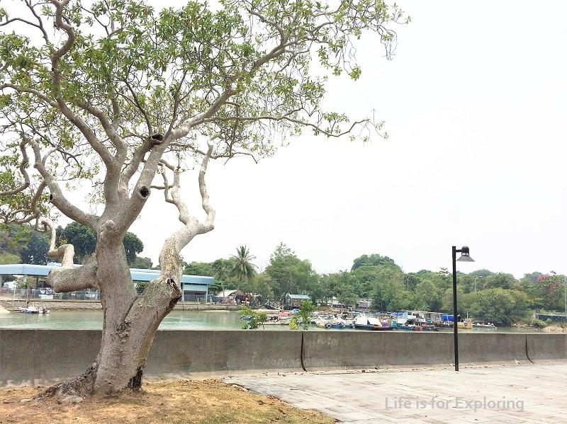 L.I.F.E Changi Beach (1)