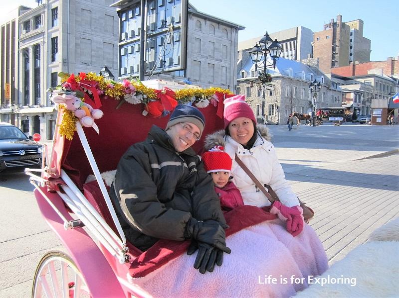 L.I.F.E Montreal Canada Horse Carriage (6)