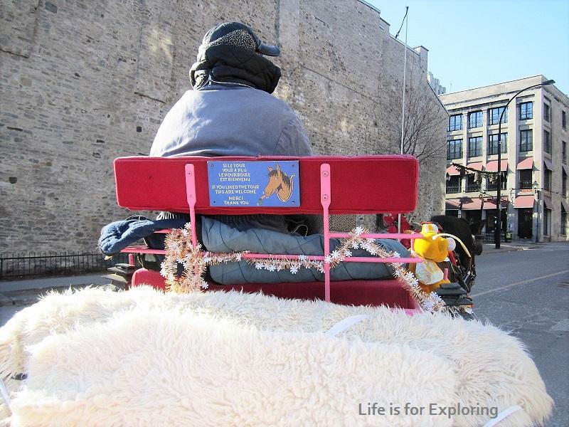 L.I.F.E Montreal Canada Horse Carriage (7)