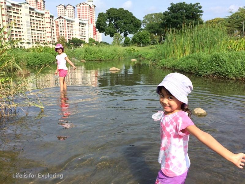 L.I.F.E Bishan Park.jpg