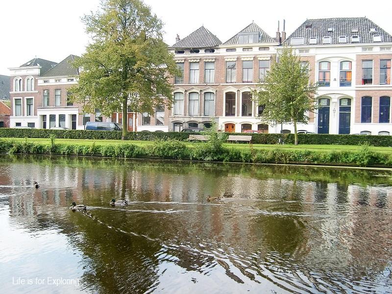 L.I.F.E Holland (1)