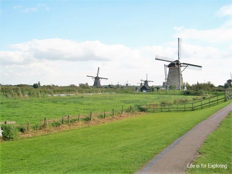 L.I.F.E Holland (6)