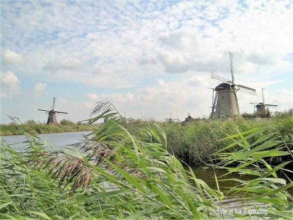 L.I.F.E Holland (9)