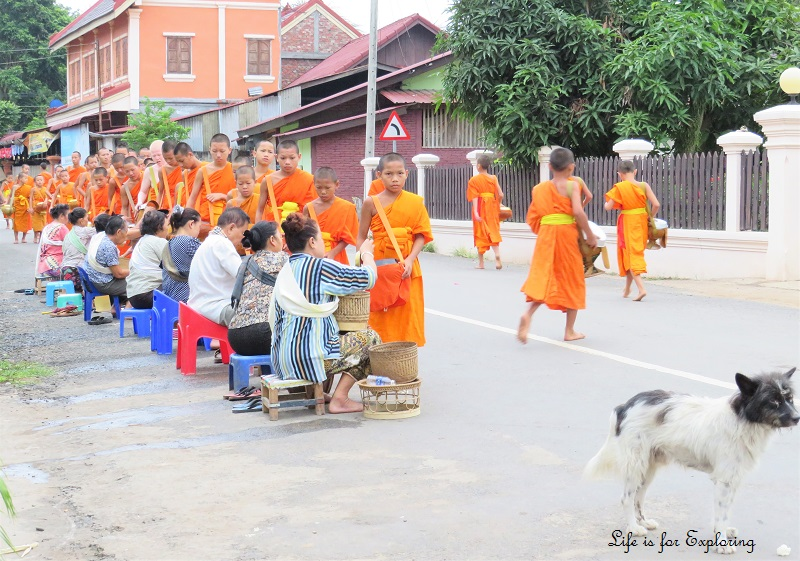 l-if-e-luang-prabang-alms-monks-laos-5