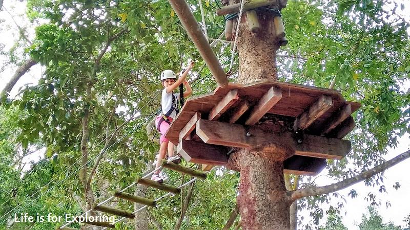 l-i-f-e-forest-adventure-singapore-2